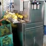 Машина для яблоко чистки и удаления сердцевины 400 кг/час, Томск